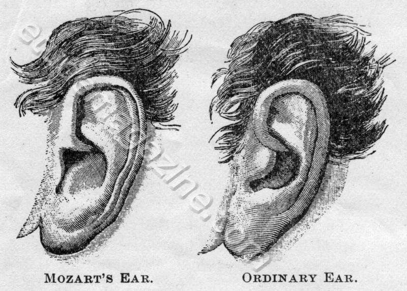 Mozart's Ear. Ordinary Ear.
